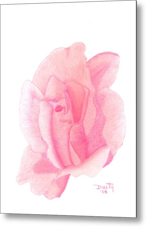 Rose Metal Print featuring the drawing Strawberry Shortcake by Dusty Reed