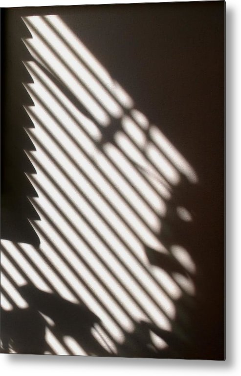 Face Metal Print featuring the photograph Face Shadow by Joy Bradley