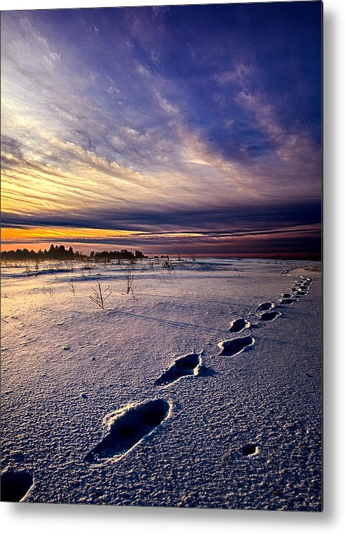 Footprints Metal Print featuring the photograph Footprints In The Snow by Phil Koch