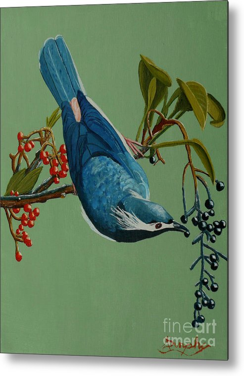 Bird Metal Print featuring the painting Lunch Time For Blue Bird by Anthony Dunphy