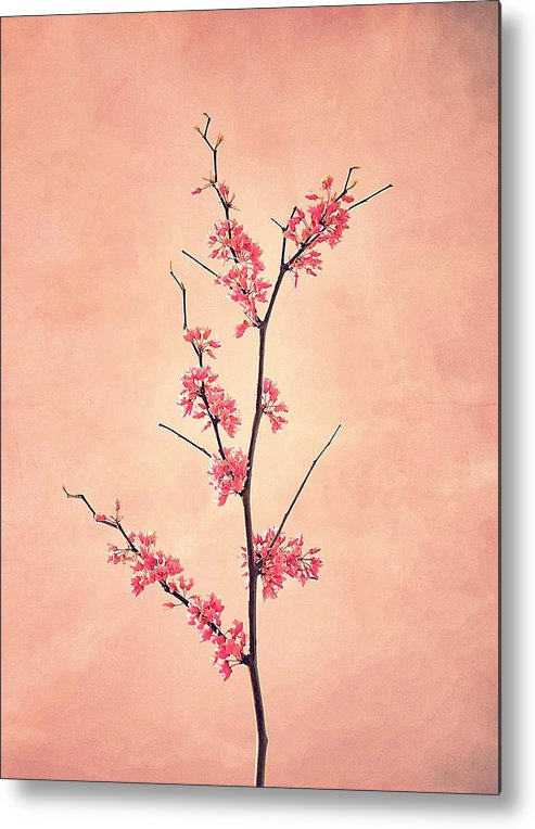 Pink Metal Print featuring the photograph The Passion Of Pink by RichCaspian Photography
