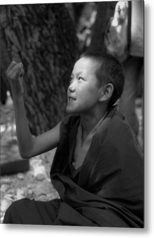 Balck And White Metal Print featuring the photograph Lama Baby by Lian Wang
