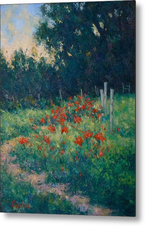Flowers Gene Cadore Front Street Gallery Poppies Daylight Painting Metal Print featuring the painting Poppy Garden by Gene Cadore