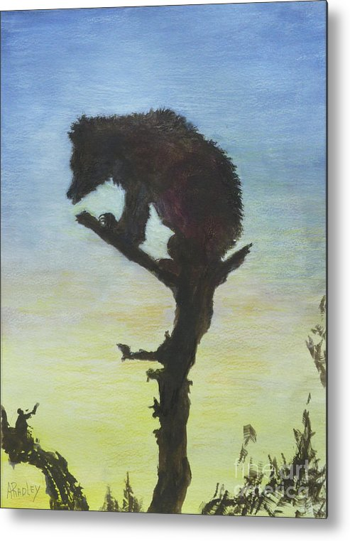 Wildlife Bear Sloth Bear Moon Bear India Animal Rescue Moonlight Metal Print featuring the painting Bear With A View by Ann Radley