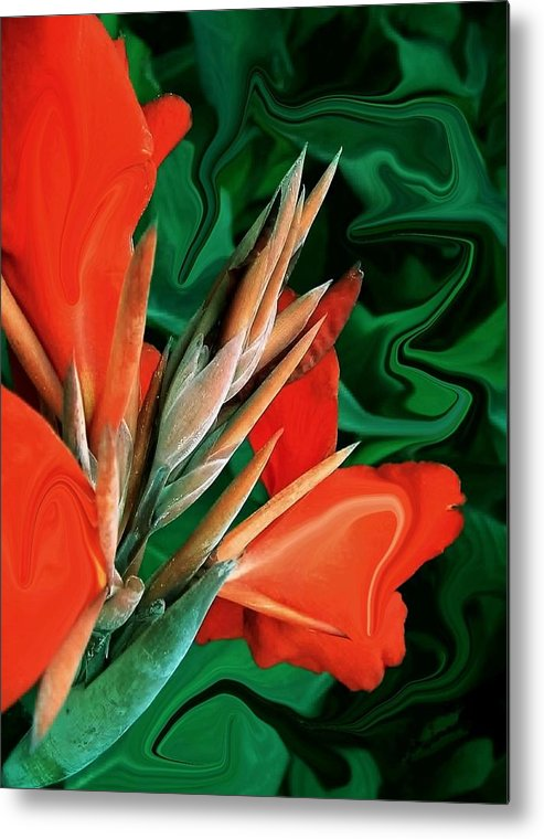 Bird Of Paradise Metal Print featuring the photograph Bird Of Paradise 5 by Jim Darnall