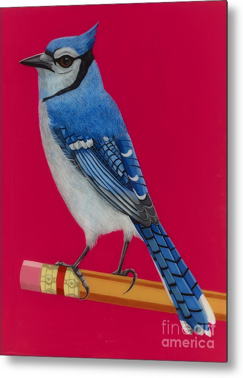Blue Jay Metal Print featuring the painting Bluejay Perched On Pencil by Jackie Besteman