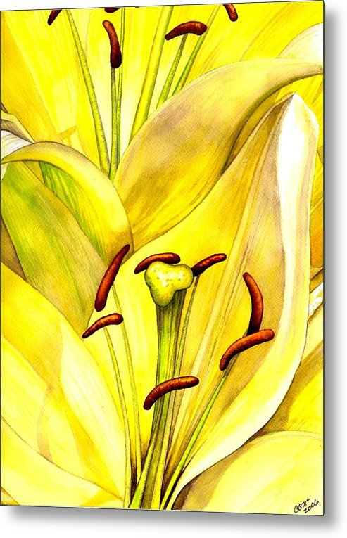 Lily Metal Print featuring the painting Daylily by Catherine G McElroy