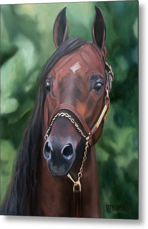 Horse Portrait Metal Print featuring the painting Dont Worry Saddlebred Sire by Donna Thomas
