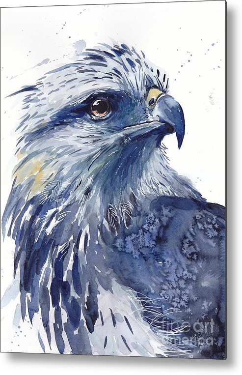 Pigeons Metal Print featuring the painting Eagle Watercolor by Suzann Sines
