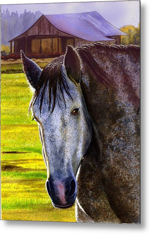 Horse Metal Print featuring the painting Gray Horse by Catherine G McElroy