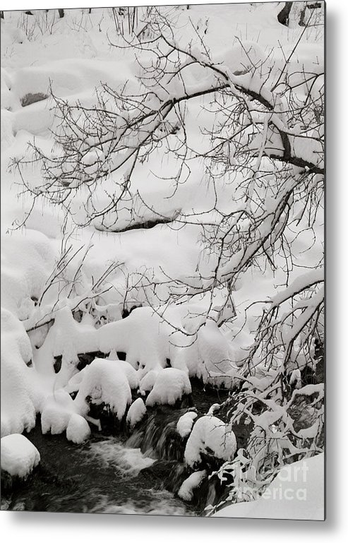 Utah Metal Print featuring the photograph Lambs Canyon In Winter by Dennis Hammer