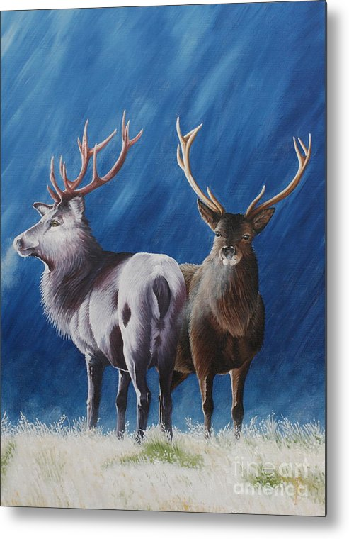 Portrait Metal Print featuring the painting Light And Dark Stags by Pauline Sharp