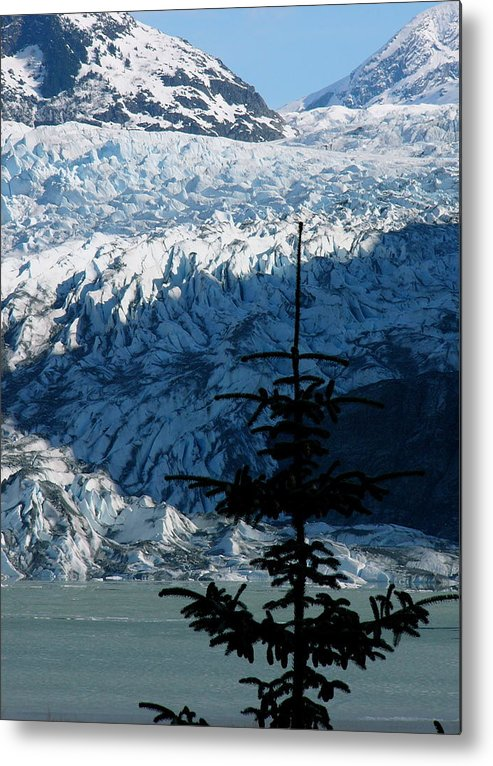 Glaciers Metal Print featuring the photograph Mendenhall Glacier by Kenna Westerman