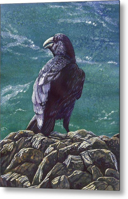 Bird Metal Print featuring the painting Raven by Catherine G McElroy