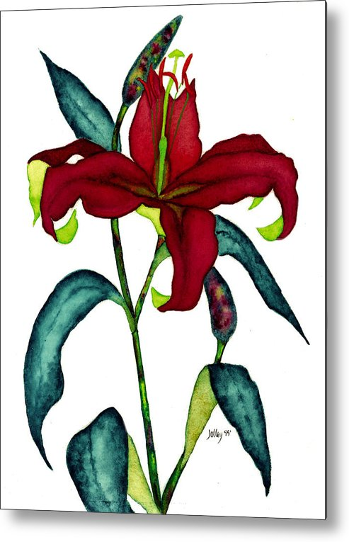 Watercolor Metal Print featuring the painting Red Lily by Stephanie Jolley