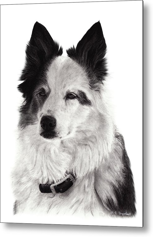 Drawing Metal Print featuring the drawing Riggs by J P Urquhart