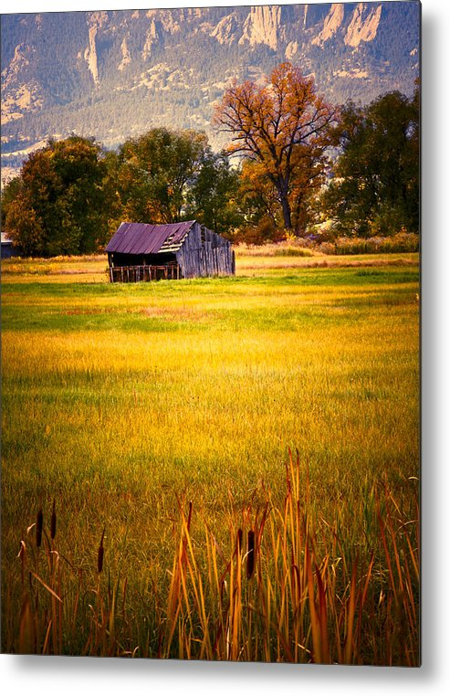 Shed Metal Print featuring the photograph Shed In Sunlight by Marilyn Hunt