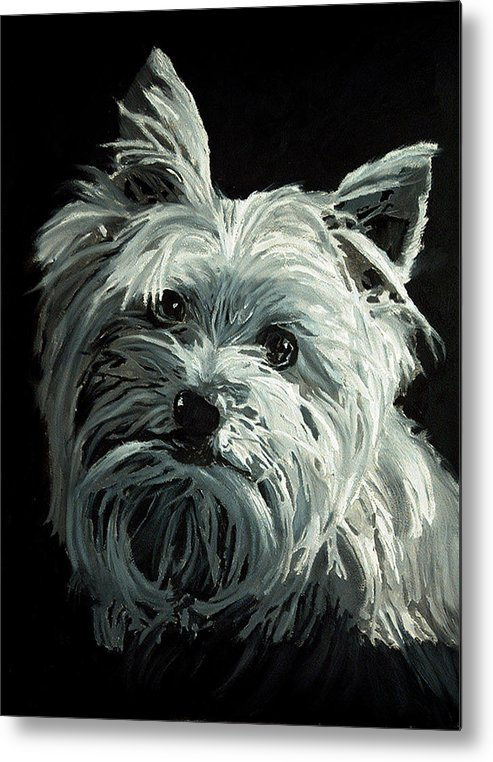 Animals Metal Print featuring the painting Yorkie by Portraits By NC