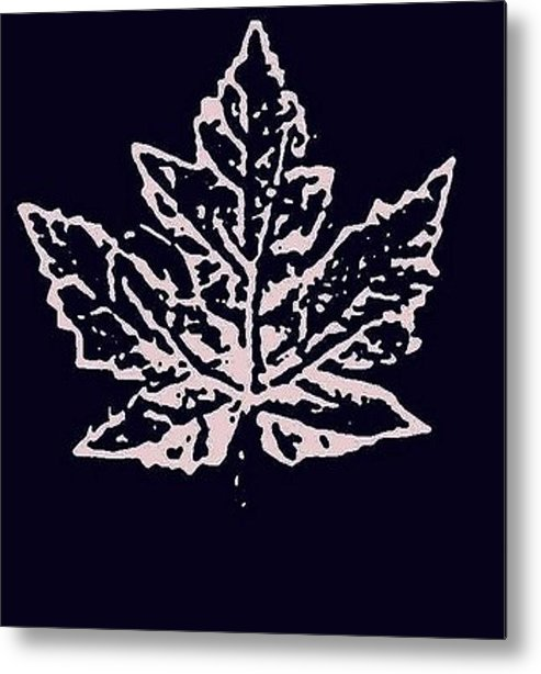 Lost. Leaves. Autumn Metal Print featuring the photograph Lost Leaves by T Byron K