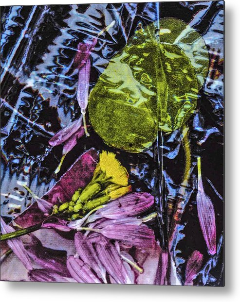 Contemporary Assemblage Of Petals Metal Print featuring the photograph Petals by Edward Shmunes