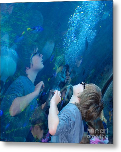 Aquarium Of The Pacific Metal Print featuring the photograph Water Wonder by Andrea Simon