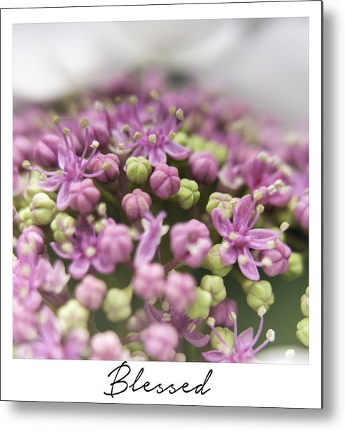 Arrangement Metal Print featuring the photograph Blessed by Janet Fikar