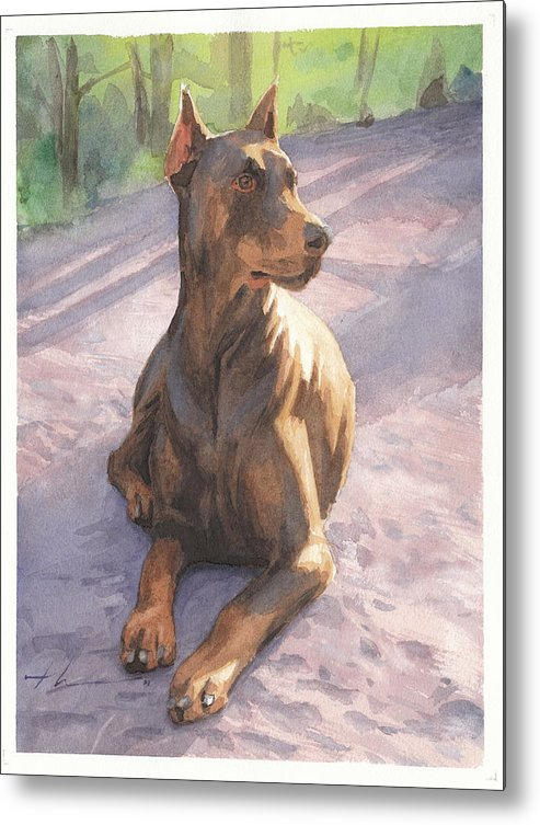 <a Href=http://miketheuer.com Target =_blank>www.miketheuer.com</a> Metal Print featuring the drawing Doberman Puppy Pencil Portrait by Mike Theuer