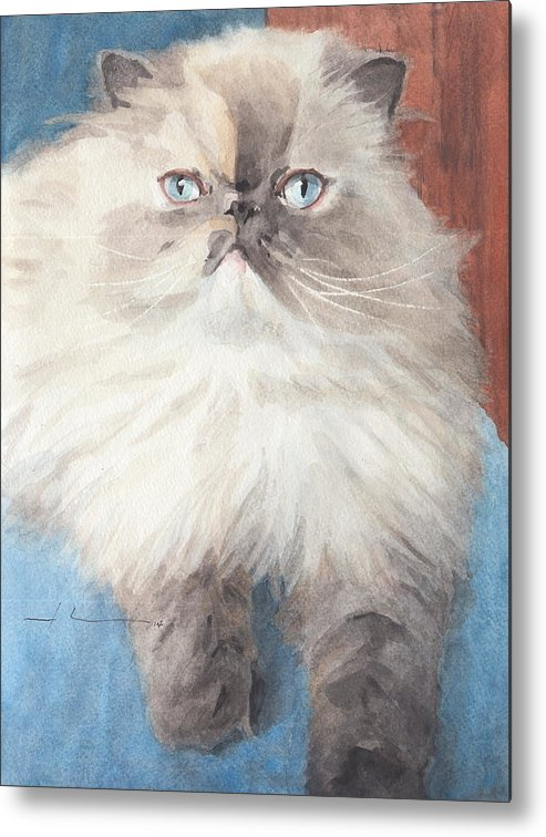 <a Href=http://miketheuer.com Target =_blank>www.miketheuer.com</a> Persian Cat Watercolor Mike Theuer Metal Print featuring the drawing Persian Cat Watercolor by Mike Theuer