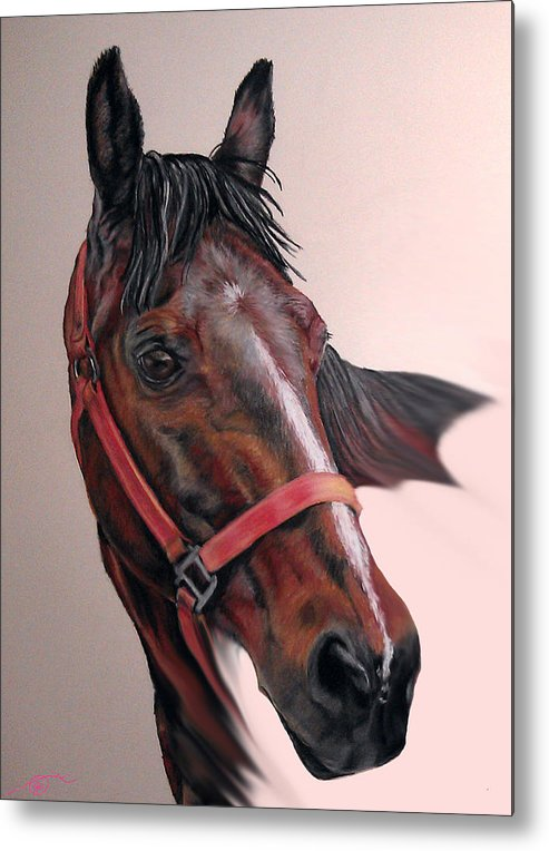 Quarter Horse Metal Print featuring the pastel Lynette's Quarter Horse by Ann Marie Chaffin
