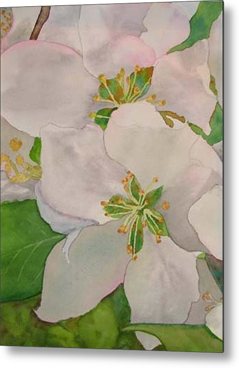 Apple Blossoms Metal Print featuring the painting Apple Blossoms by Sharon E Allen
