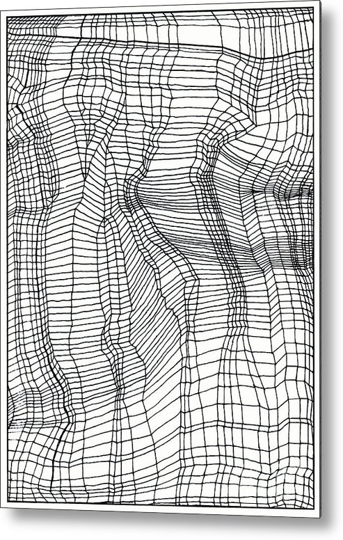 Contours Metal Print featuring the drawing Contours by Andy Mercer