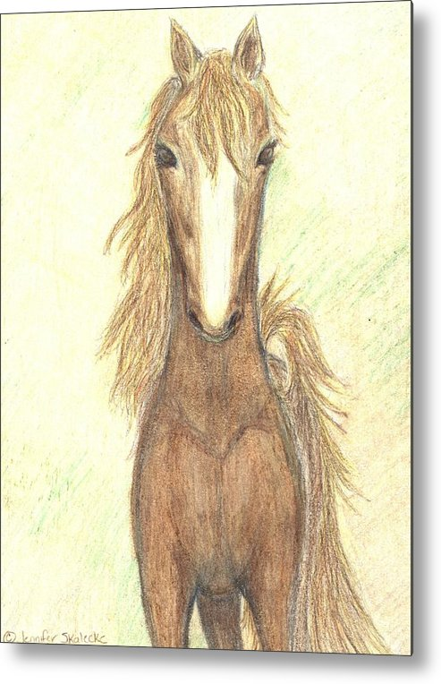 Horse Metal Print featuring the drawing Defiant Freedom by Jennifer Skalecke