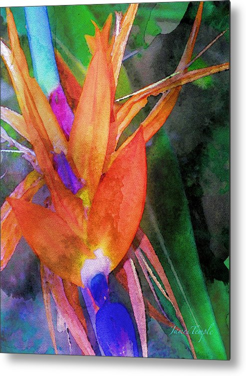 Bird Of Paradise Metal Print featuring the digital art Hawaiian Abstract by James Temple