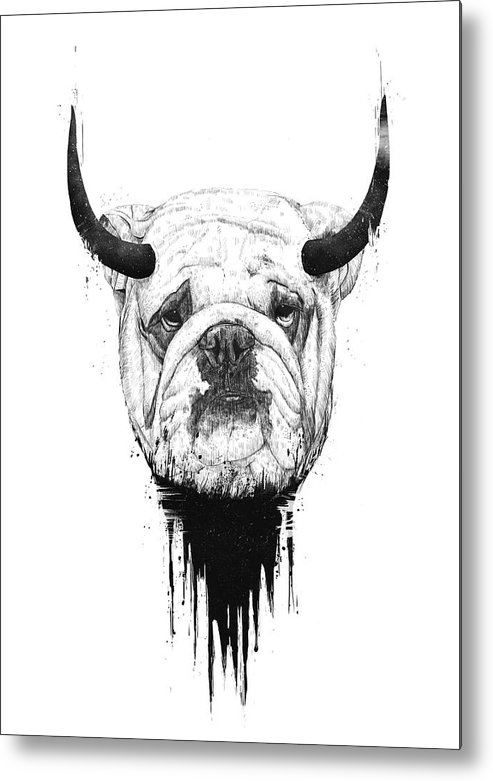 Bulldog Metal Print featuring the drawing Bull dog by Balazs Solti