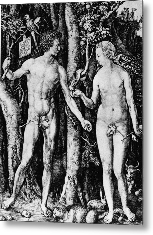 Engraving Metal Print featuring the photograph Engraving Of Adam And Eve by Hulton Archive