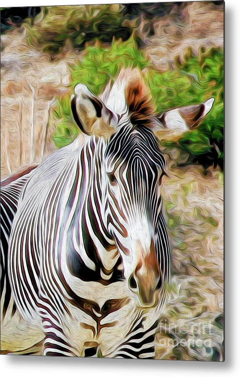 Animal Metal Print featuring the digital art Zebra Rendition I by Kenneth Montgomery
