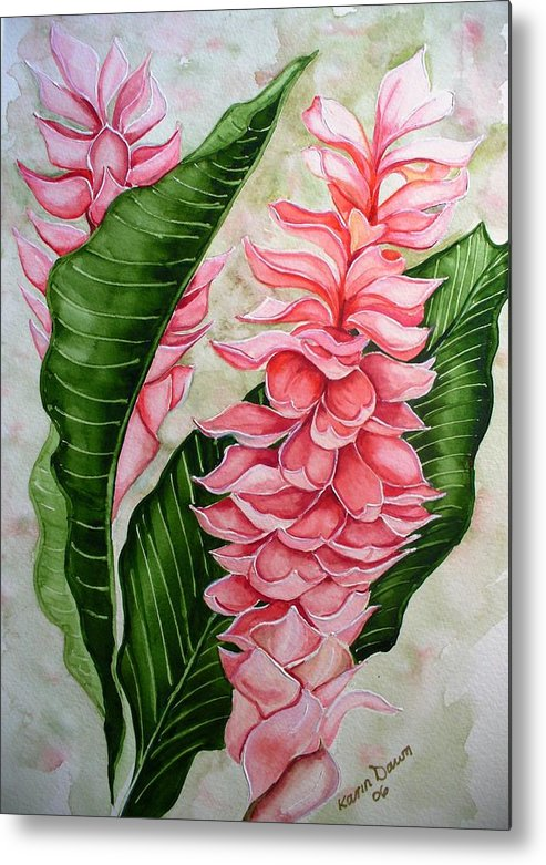 Flower Painting Floral Painting Botanical Painting Ginger Lily Painting Original Watercolor Painting Caribbean Painting Tropical Painting Metal Print featuring the painting Pink Ginger Lilies by Karin Dawn Kelshall- Best