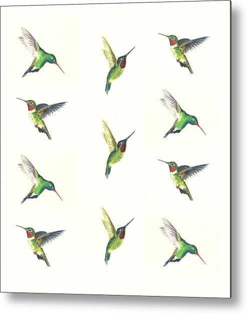 Animals Metal Print featuring the painting Hummingbirds Number 2 by Michael Vigliotti