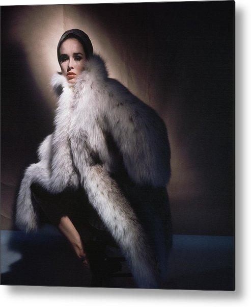 Studio Shot Metal Print featuring the photograph Sondra Peterson Wearing Fur Coat by Horst P. Horst