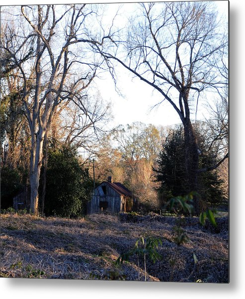 Woods Metal Print featuring the photograph This Ole House by Leon Hollins III