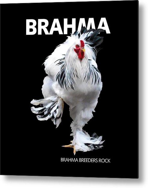Brahma Metal Print featuring the digital art Brahma breeders Rock t-shirt print by Sigrid Van Dort