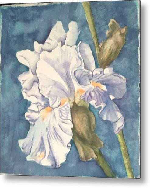 Watercolor Metal Print featuring the painting Iris twenty one by Diane Ziemski