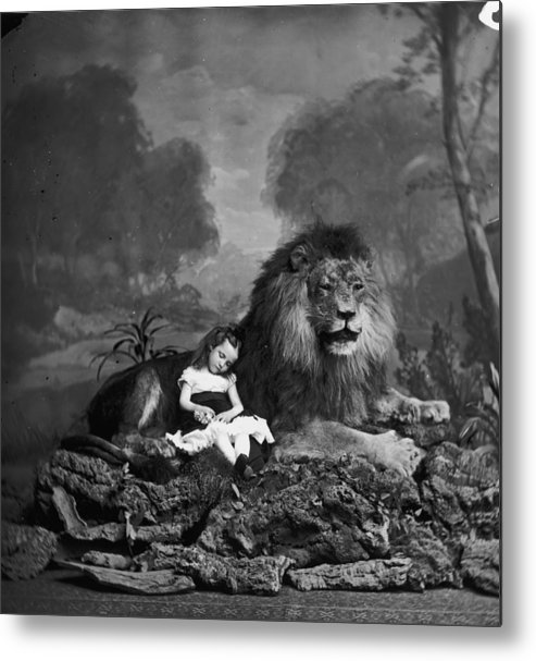Stuffed Metal Print featuring the photograph Beauty And The Beast by London Stereoscopic Company