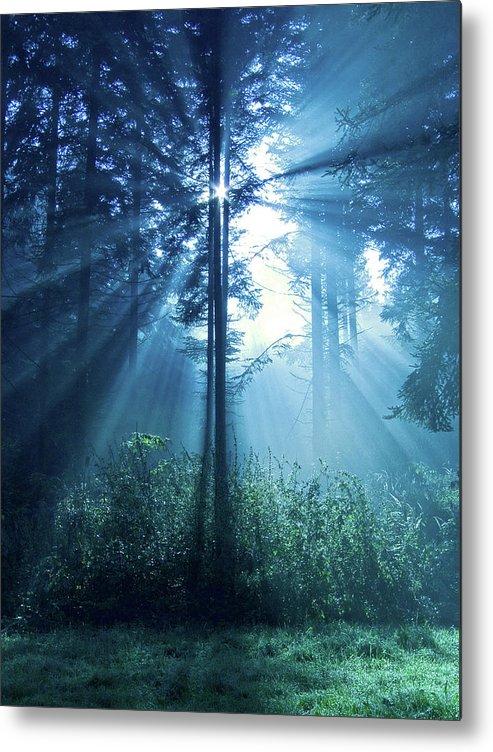 Nature Metal Print featuring the photograph Magical Light by Daniel Csoka