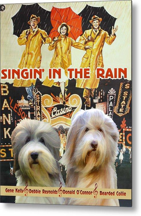 Bearded Collie Metal Print featuring the painting Bearded Collie Art Canvas Print - Singin In The Rain Movie Poster by Sandra Sij