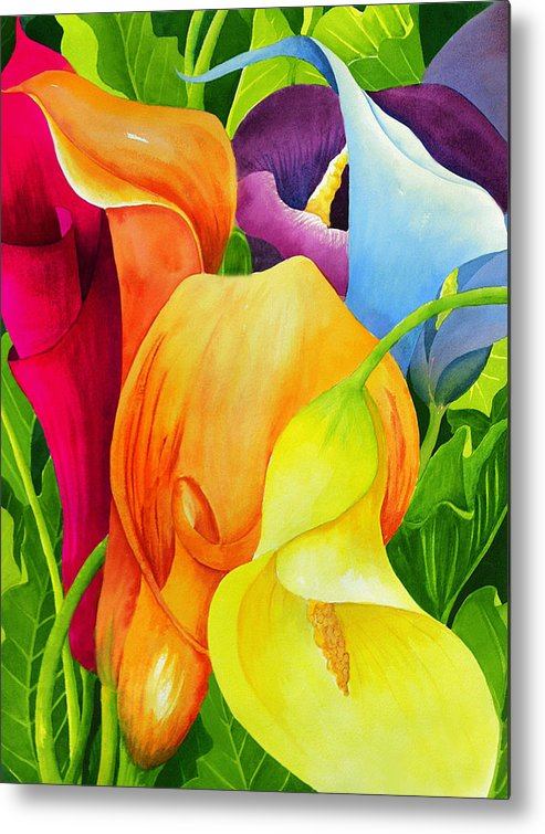 Flower Paintings Metal Print featuring the painting Calla Lily Rainbow by Janis Grau