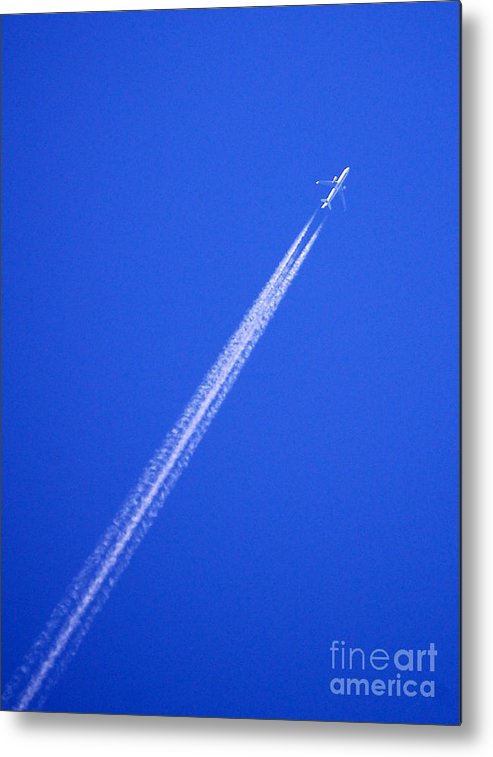 Jet Metal Print featuring the photograph Can I Go Too by Linda Rae Cuthbertson