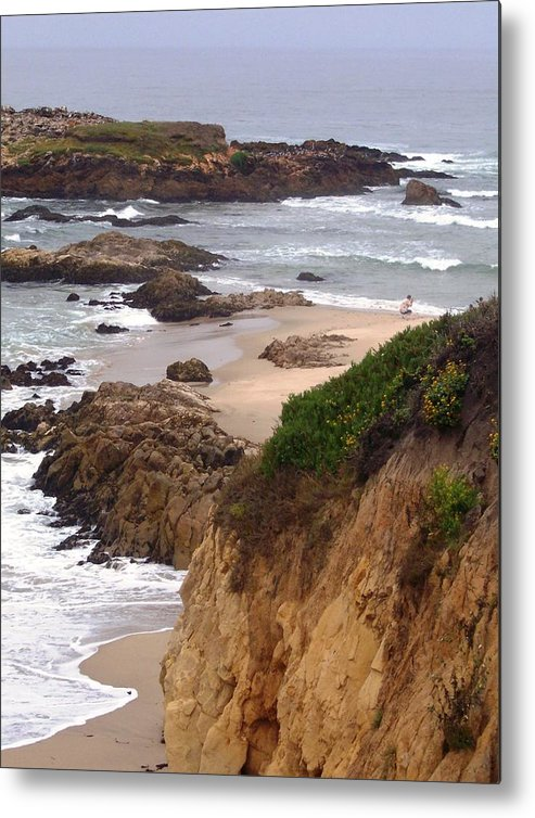 Coast Metal Print featuring the photograph Coastal Scene 8 by Pharris Art