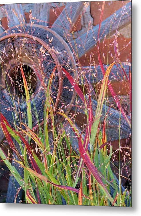 Fall;fallcolors;grass;pinos Altos;new Mexico Metal Print featuring the photograph Dance Of The Wild Grass by Feva Fotos