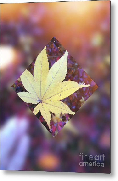 Maple Leaf Metal Print featuring the digital art One Yellow Maple Leaf by Beverly Claire Kaiya
